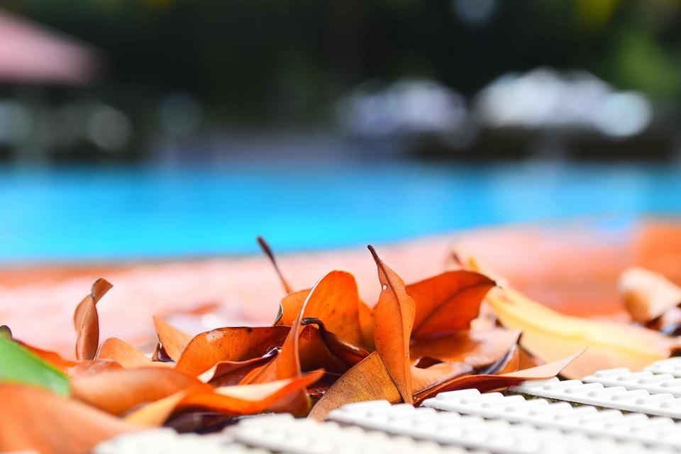 cómo evitar el agua verde en la piscina