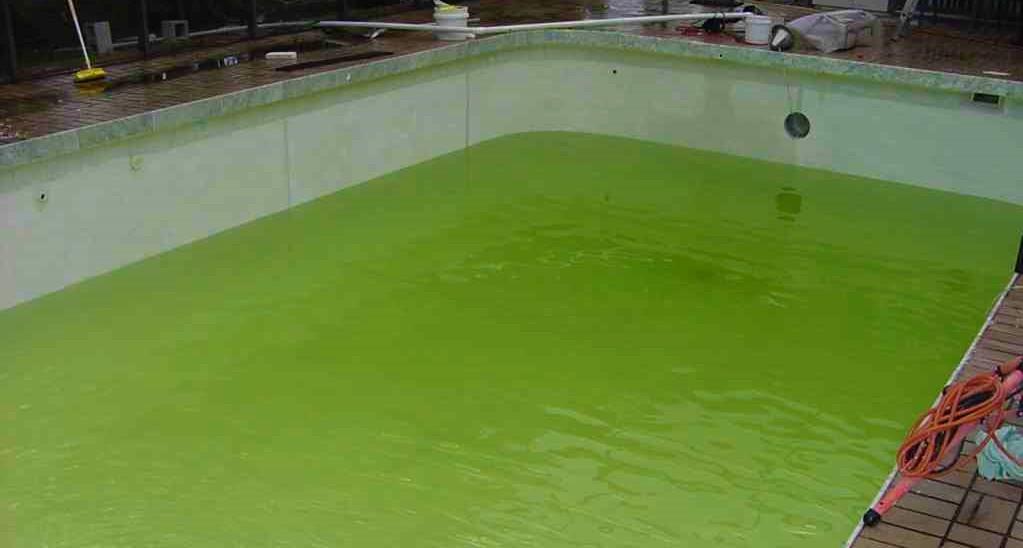 agua verde en piscinas