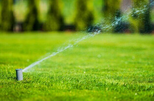 fertilizante-cesped