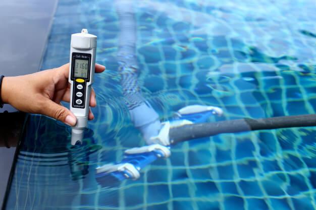 algas-piscinas