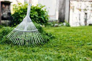 como-cuidar-el-jardin