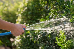 consejos-para-cuidar-el-jardin