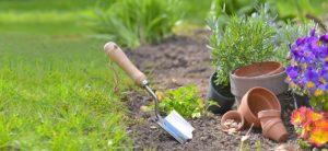 cuidar-el-jardin