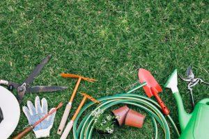 cuidar-un-jardin