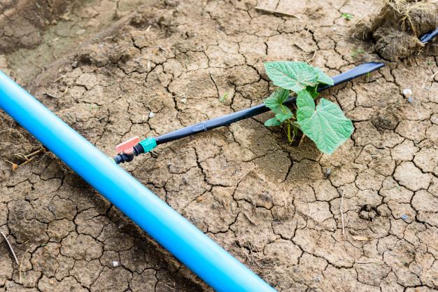 sistema de riego por goteo para campo